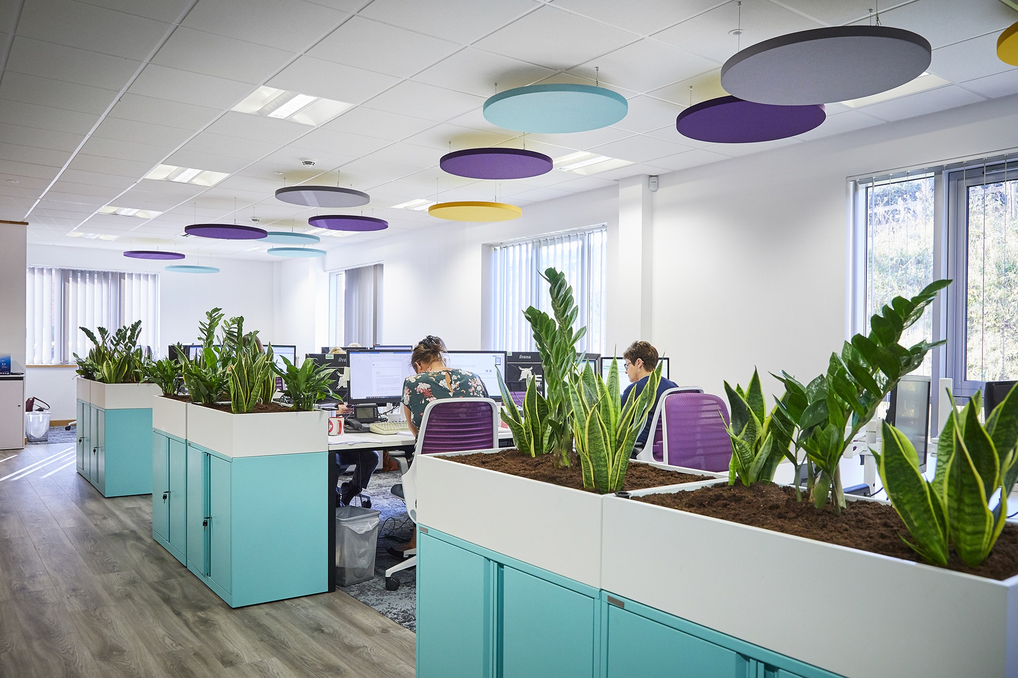 Commercial office design at Finch Consulting, featuring biophilic furniture